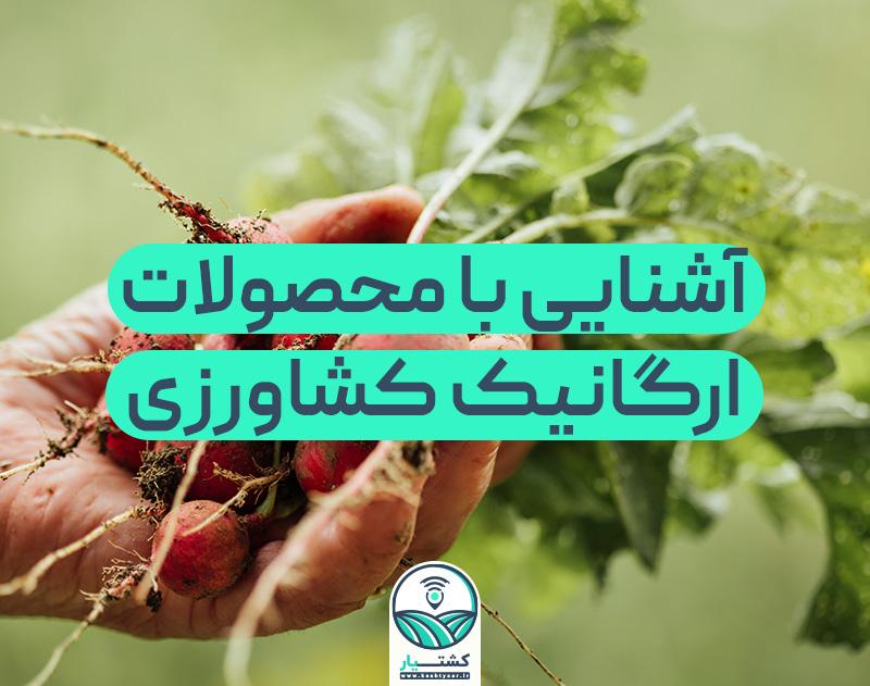 محصولات ارگانیک کشاورزی